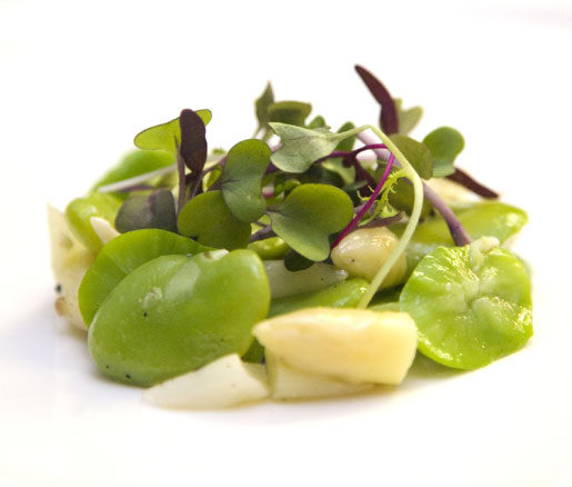 white asparagus and favas at the James Beard House