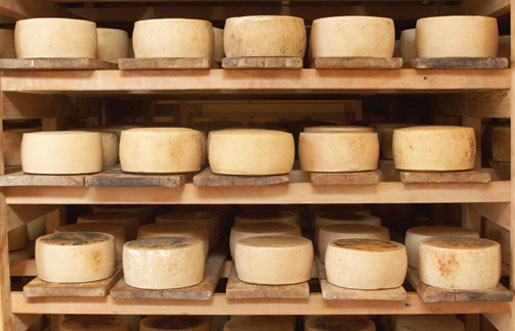 An autumnal cheese primer from chef Matt Jennings and the James Beard Foundation
