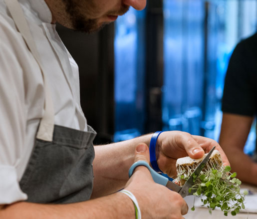 Clipping Microgreens at the Beard House