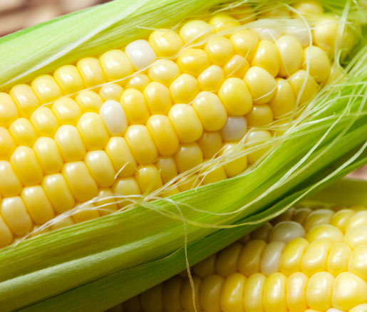 Creamed Summer Corn recipe