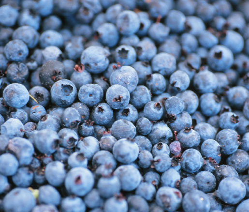 berry recipes from the James Beard Foundation