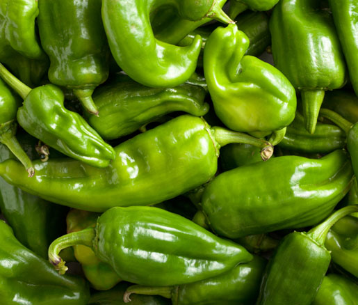 green pepper recipes curated by the James Beard Foundation