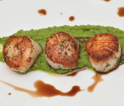 Pan-Seared Scallops with Spring Pea and Grana Padano Purée