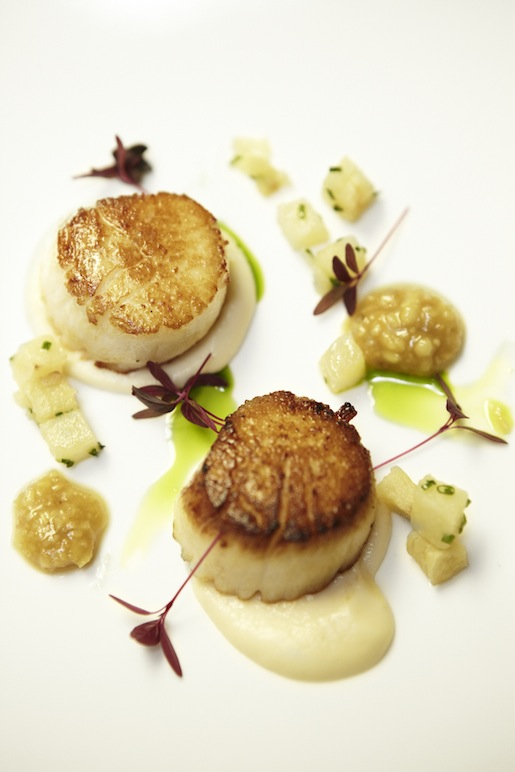Seared Scallop with Macomber Turnips and Pine Nut Butter