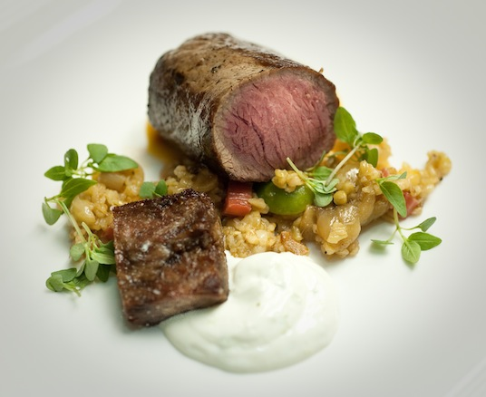 Roasted Lamb Loin with Braised Lamb Rib, Pickled Rhubarb, Farro, and Apricots