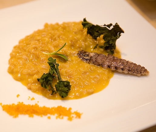 Farro Risotto with La Zingara Farm Hubbard Squash, Butter-Poached Mantis Shrimp, Bottarga, and Crispy Kale