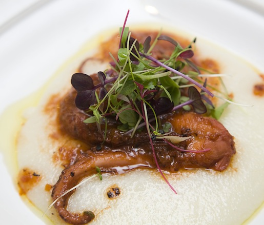 Braised Baby Octopus with San Marzano Tomato Sauce and Soft Polenta