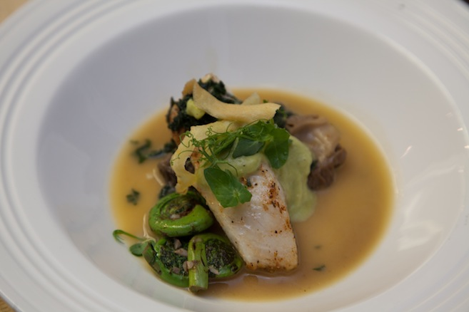 Alaskan Halibut with Morels, Fiddlehead Ferns, Sweet Pea Mousse, and Nettles