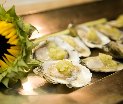 Cape May Salt Oysters with Cucumber Relish