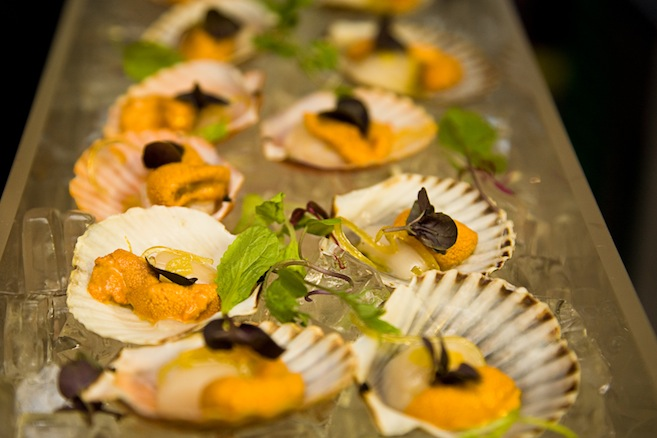 Scallop Tartare with Sea Urchin Emulsion and Pickled Ginger