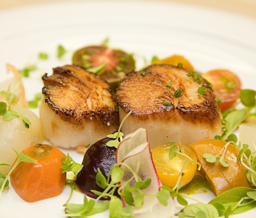 Barnegat Inlet Scallops with Baby Arugula, Garden Vegetables, Radishes, Fried Shallots, and Citrus–Basil Emulsion