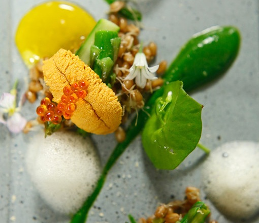Asparagus and Eggs> Sea Urchin, Cured Yolk, Trout Roe, Herring Roe, and Sprouted Wheat Berries