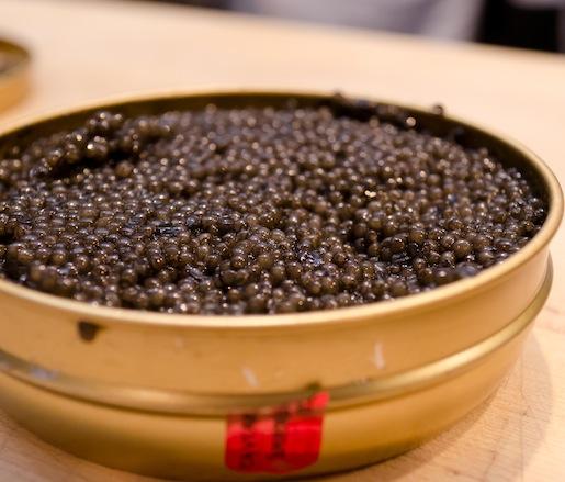 Mote Marine Sturgeon Caviar