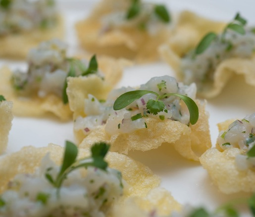 Halibut Ceviche with Cilantro on Crispy Masa