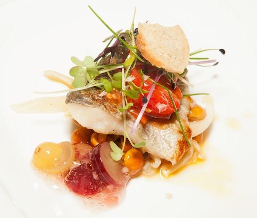 High Lands > Seared Mountain Valley Trout with Foraged Mushrooms, Pickled Tomatoes, and Grape Vinaigrette