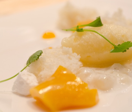 Tropical Ganache with Coconut Tapioca, Yogurt Micro-Sponge, Pineapple–Lime Sorbet, and Micro-Basil