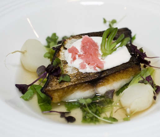 Cured Mackerel with Steamed Turnips, Radishes, and Horseradish Cream