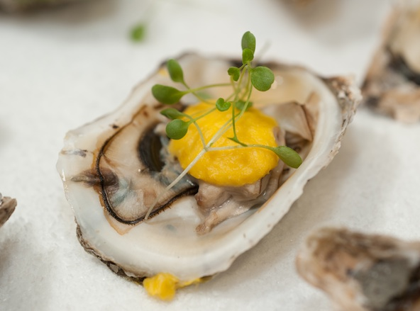 Blue Point Oysters with Sweet Corn Crema