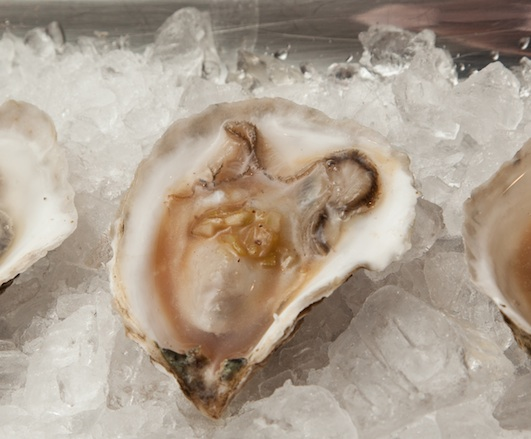 J.A.M. Oysters with Oxtail Mignonette