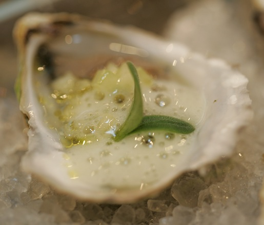 Oysters with Borage and Cucumbers