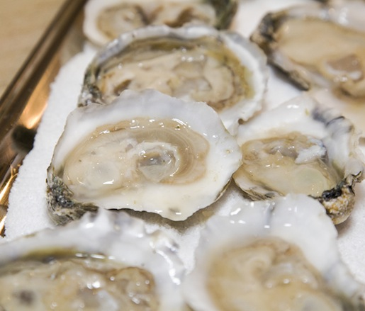 East Coast Oysters with Sake–Ginger Mignonette