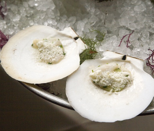 Massachusetts Sea Scallops with Pear and Horseradish for the Maison Premiere Seafood Tower