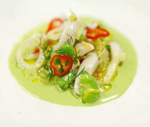 Chilled Razor Clams> Meyer Lemon, Fennel, and Favas