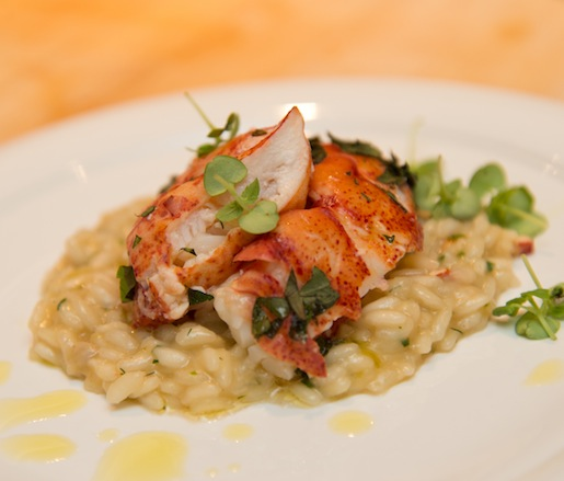 Seafood Risotto with Nepitella and Lemon Zest