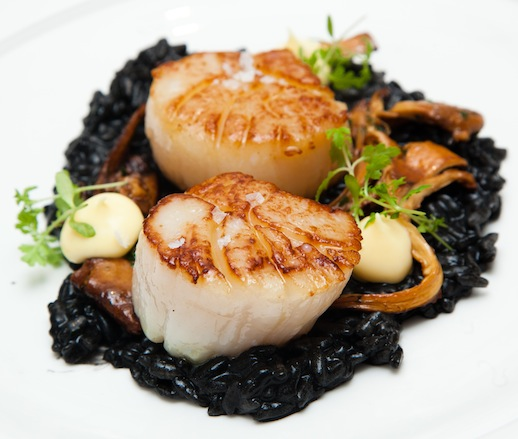 British Columbia Scallops with Squid Ink Risotto, Chanterelles, and Sorrel