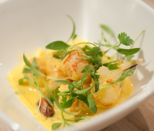 Rock Shrimp Tiradito with Ají Amarillo Aïoli, Red Onions, and Cilantro
