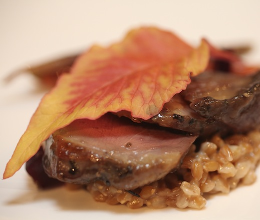 Smoked Squab with Heirloom Carrots, German Einkorn, Maitake Mushrooms, Root Beer Leaf, Burnt Onions, Salt-Roasted Beets, and Figs