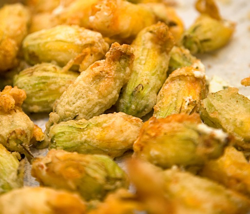 Fried Squash Blossoms with Bonnie Blue Farm Tennessee Goat Cheese