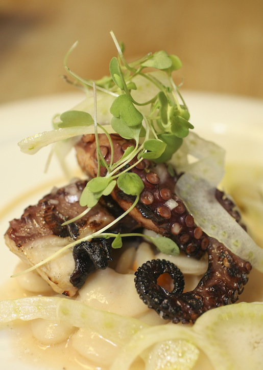 Grilled Octopus with Giant White Beans, Fennel, Roasted Peppers, Caperberries, and Roasted Garlic–Honey Vinaigrette