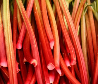 Rhubarb dessert recipes from the James Beard Foundation
