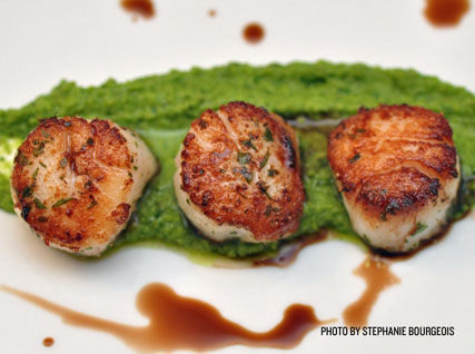 Scallops with Spring Pea and Grana Padano Purée