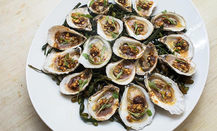 Oysters photo by Jeff Gurwin