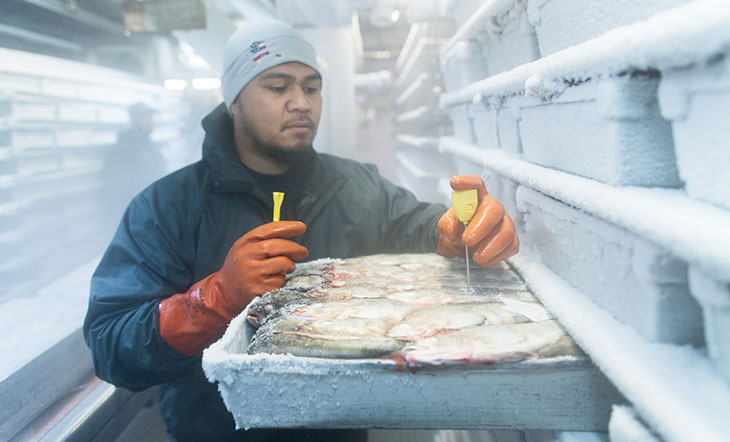 Checking frozen fish photo by Corey Arnold Alaska Seafood Marketing Institute