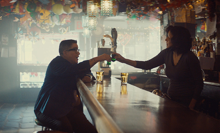 Still from the Lesbian Bar Project documentary. The image shows Lea DeLaria and Lisa Menichino cheersing drinks in a bar